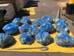 14 bags of rubbish collected from the river Lea