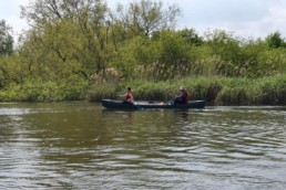 two volunteers canoeing next to reeds